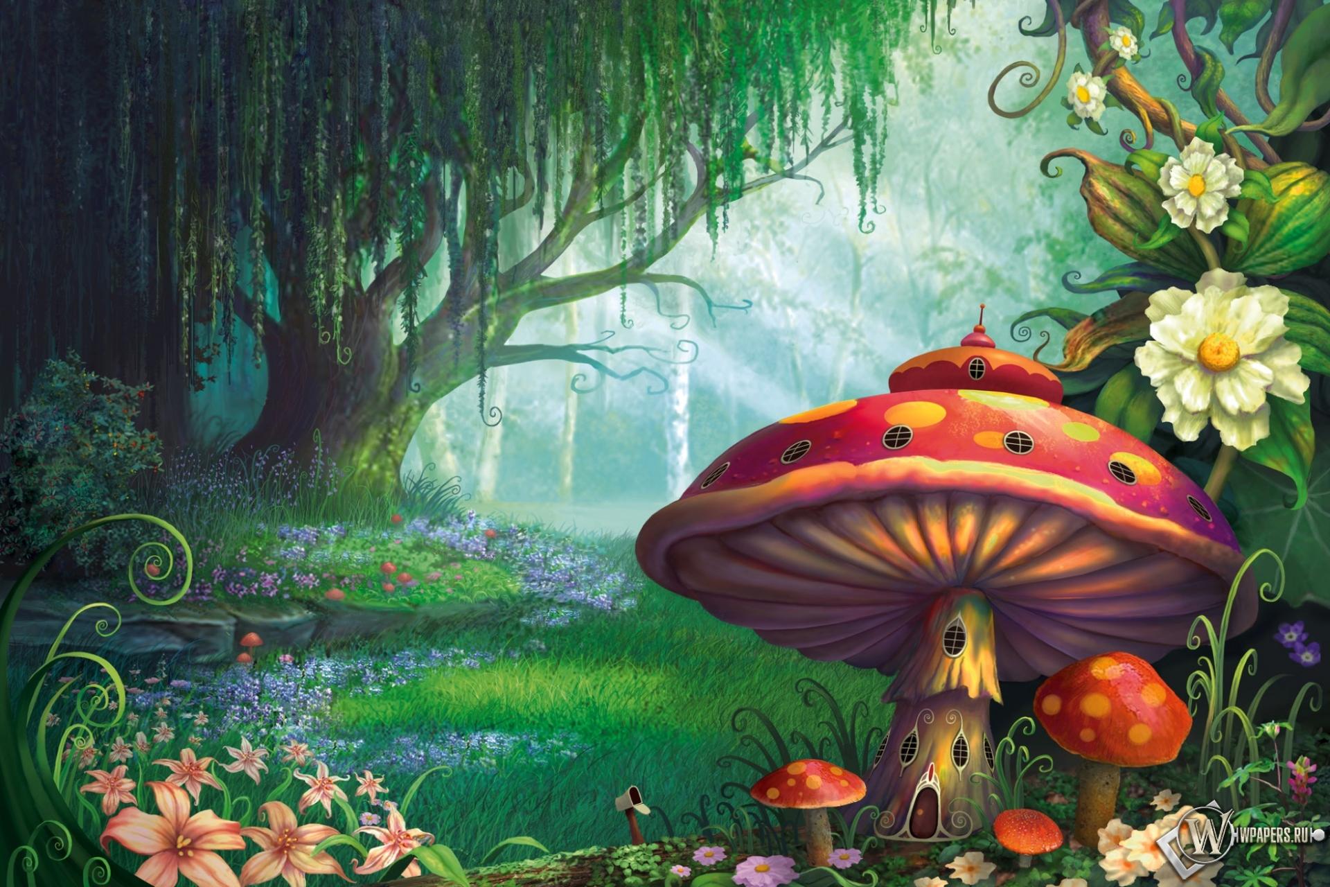 Сказочный лес  1920x1280