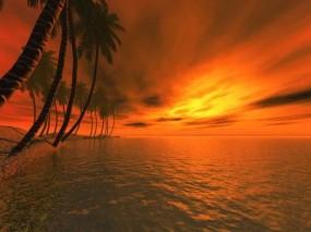 Обои 3D Пальмы: Пальмы, Море, Фэнтези - Природа