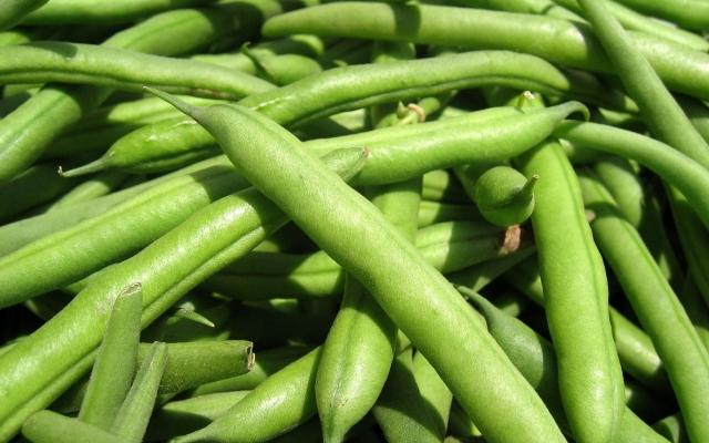 Зеленые бобы