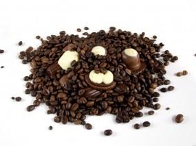 Обои Кофе с шоколадом: Кофе, Шоколад, Еда