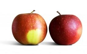 Обои Яблочки: Фрукты, Яблоко, Яблоки, Еда