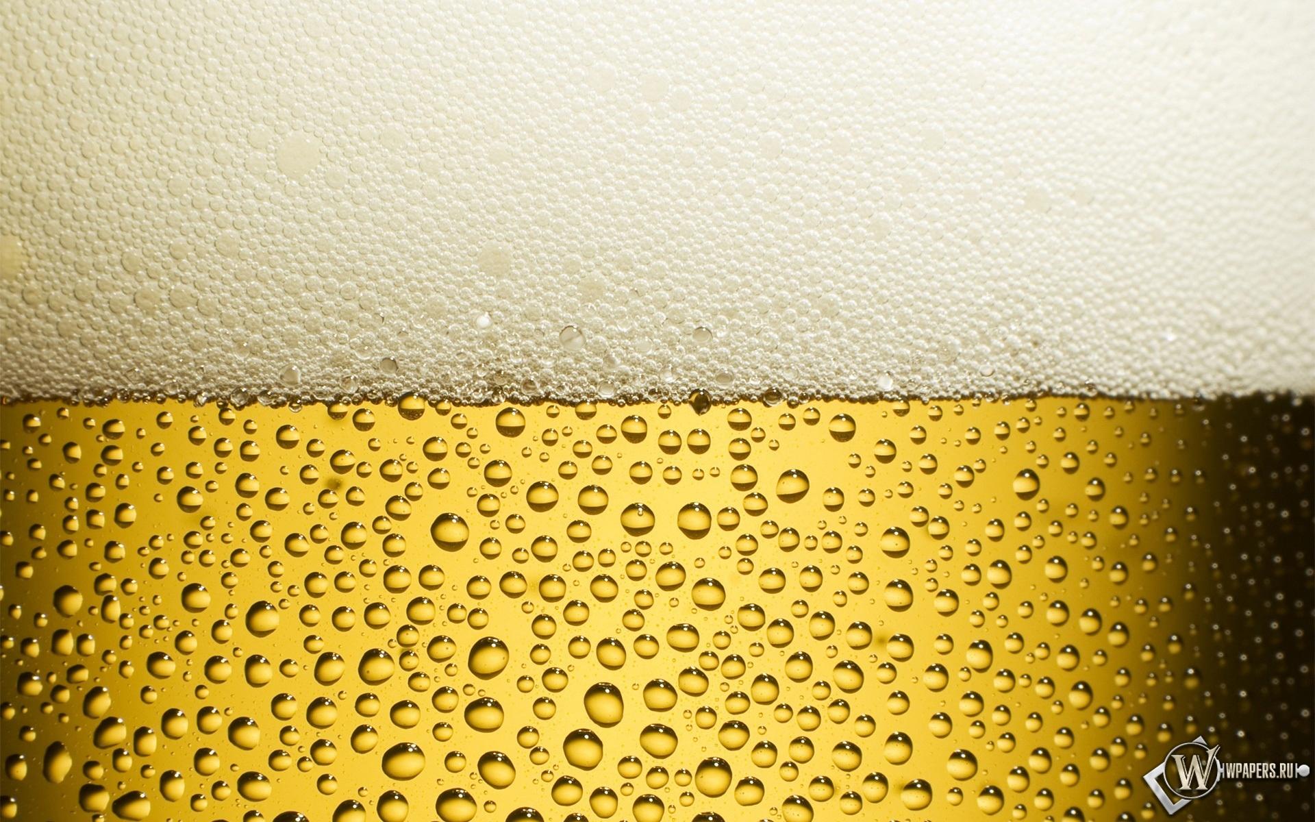 Пиво пенное 1920x1200