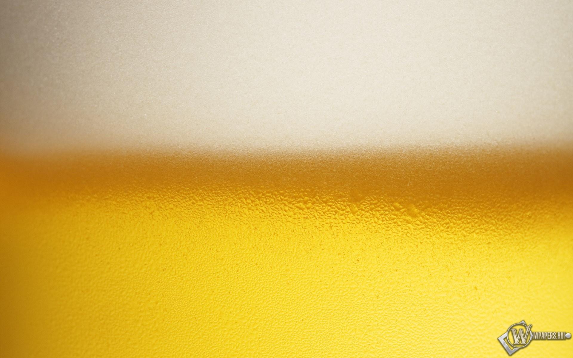 Пенное пиво 1920x1200