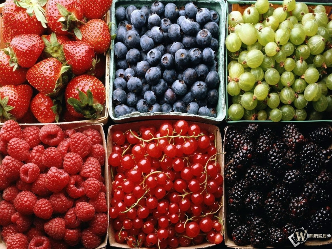 Лесные ягоды 1152x864