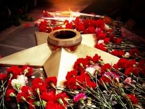 Обои День Победы: Цветы, Звезда, День Победы, День победы