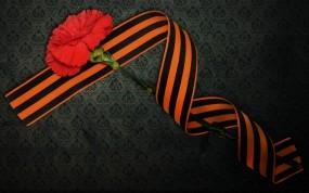 Обои День Победы: 9 мая, День Победы, Гвоздика, Георгиевская лента, День победы
