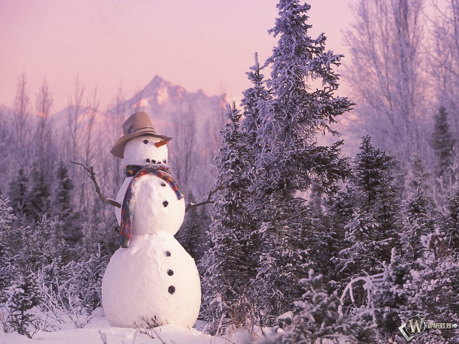 Снеговик 1600x1200