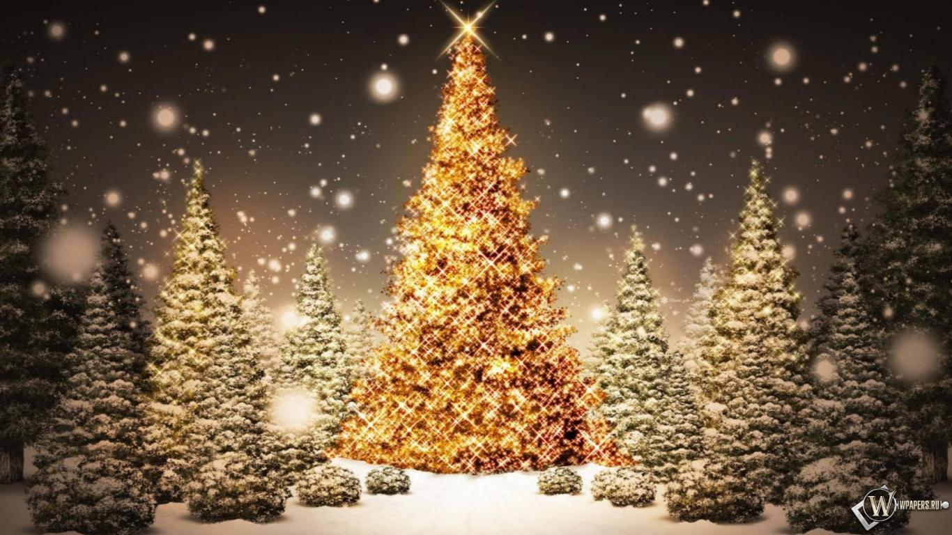 Рождественская елка 1366x768