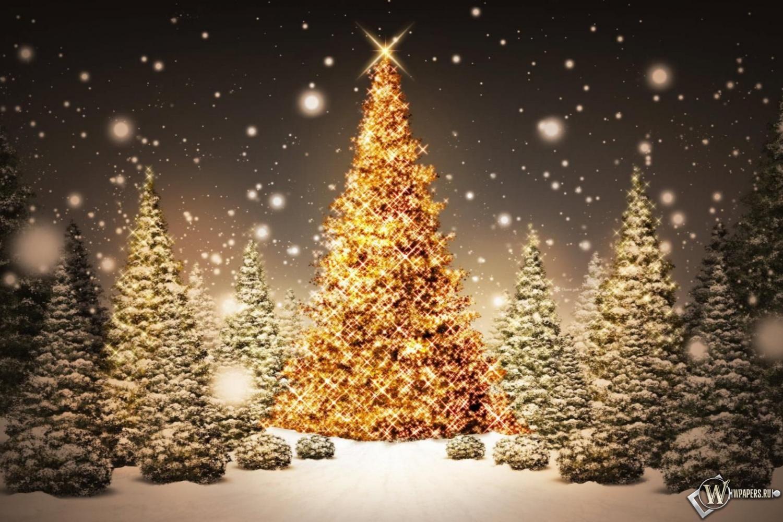 Рождественская елка 1500x1000