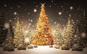 Обои Рождественская елка: Зима, Снег, Елка, Рождество, Праздник, Новый год