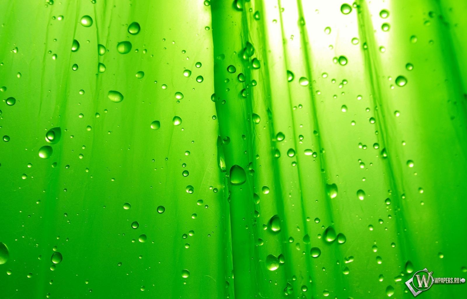 Зелёный фон 1600x1024
