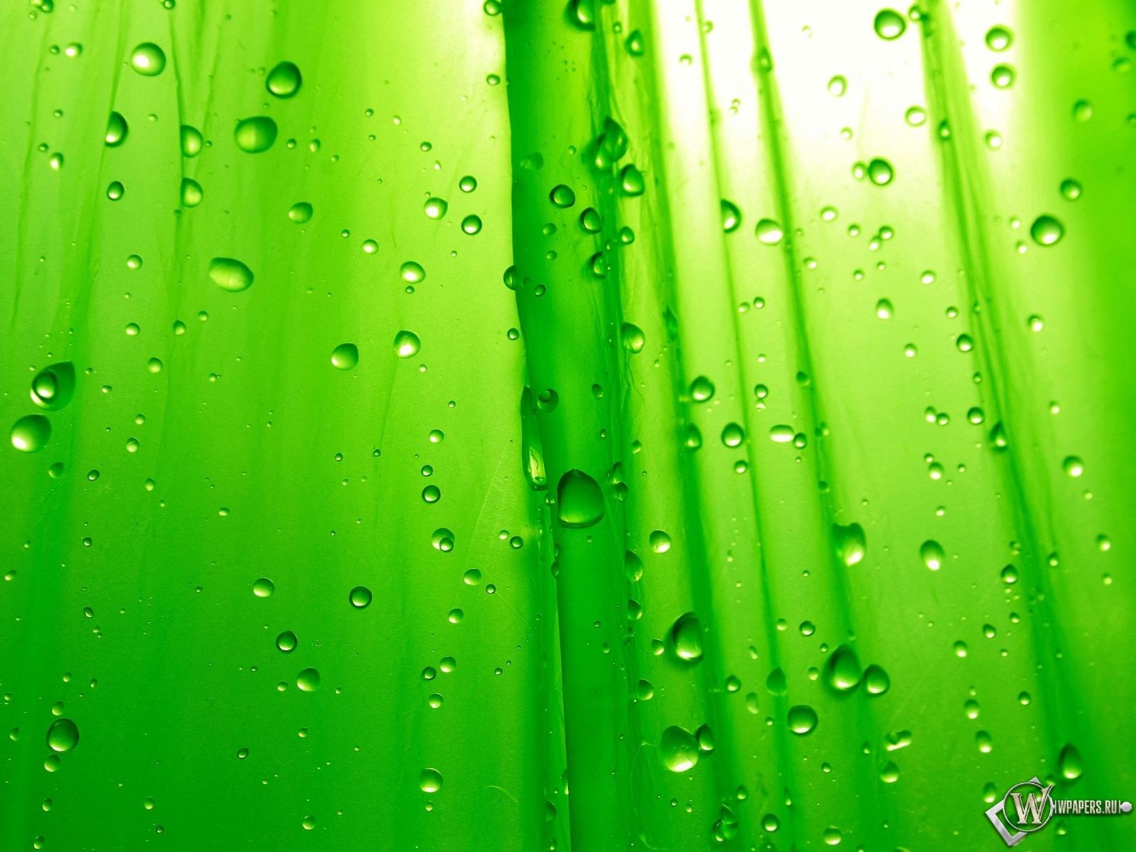 Зелёный фон 1600x1200