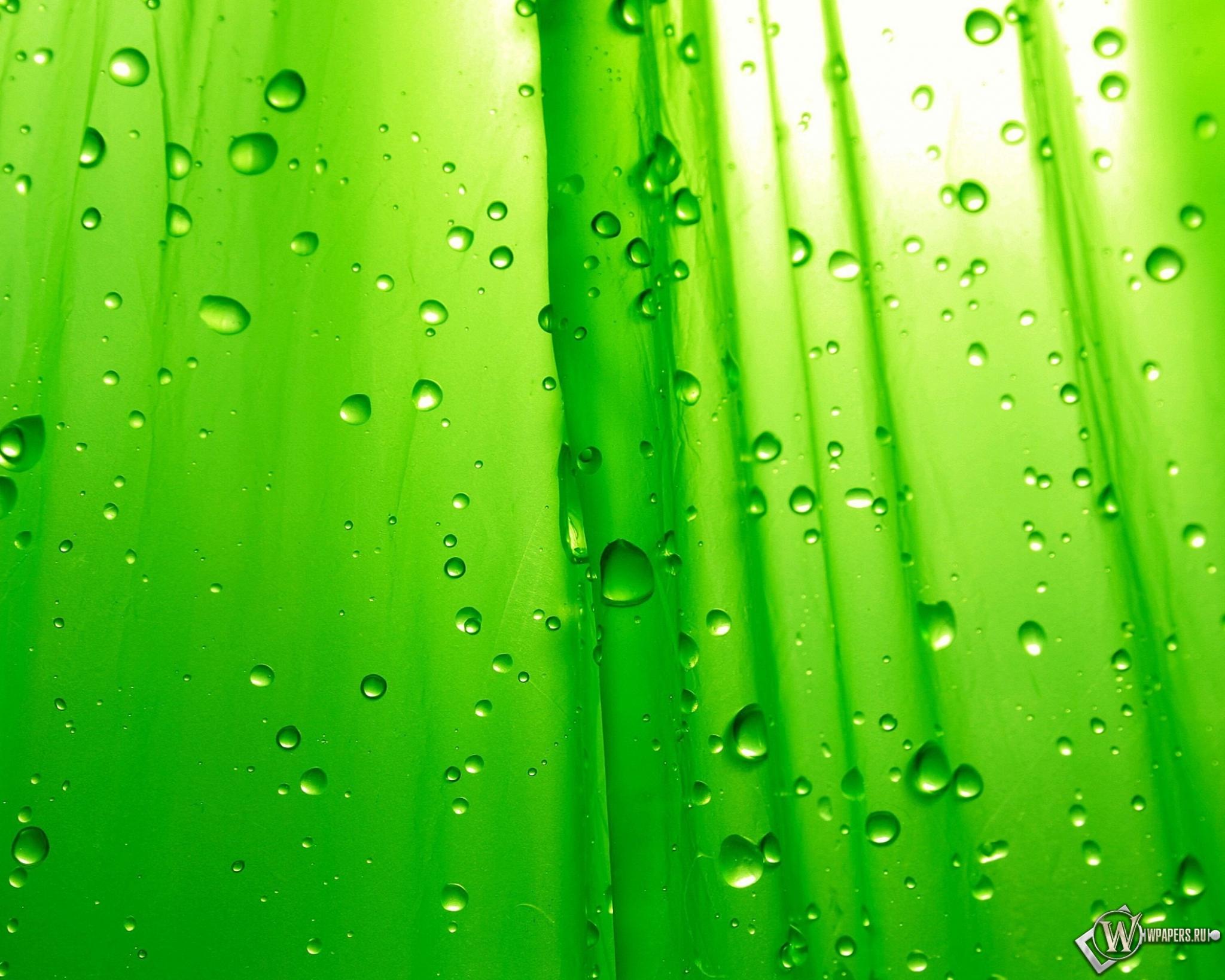Зелёный фон 2048x1638