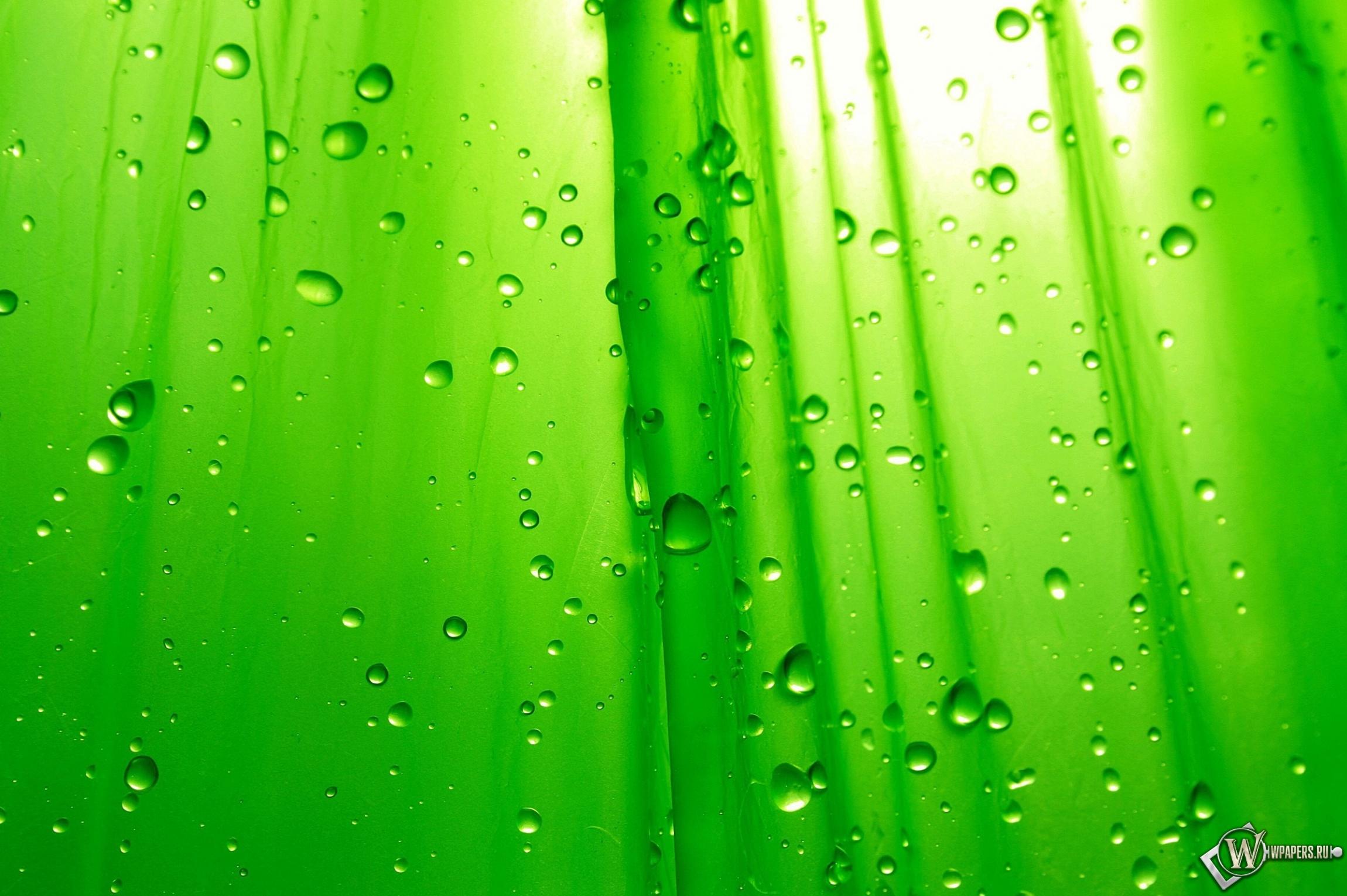 Зелёный фон 2300x1530