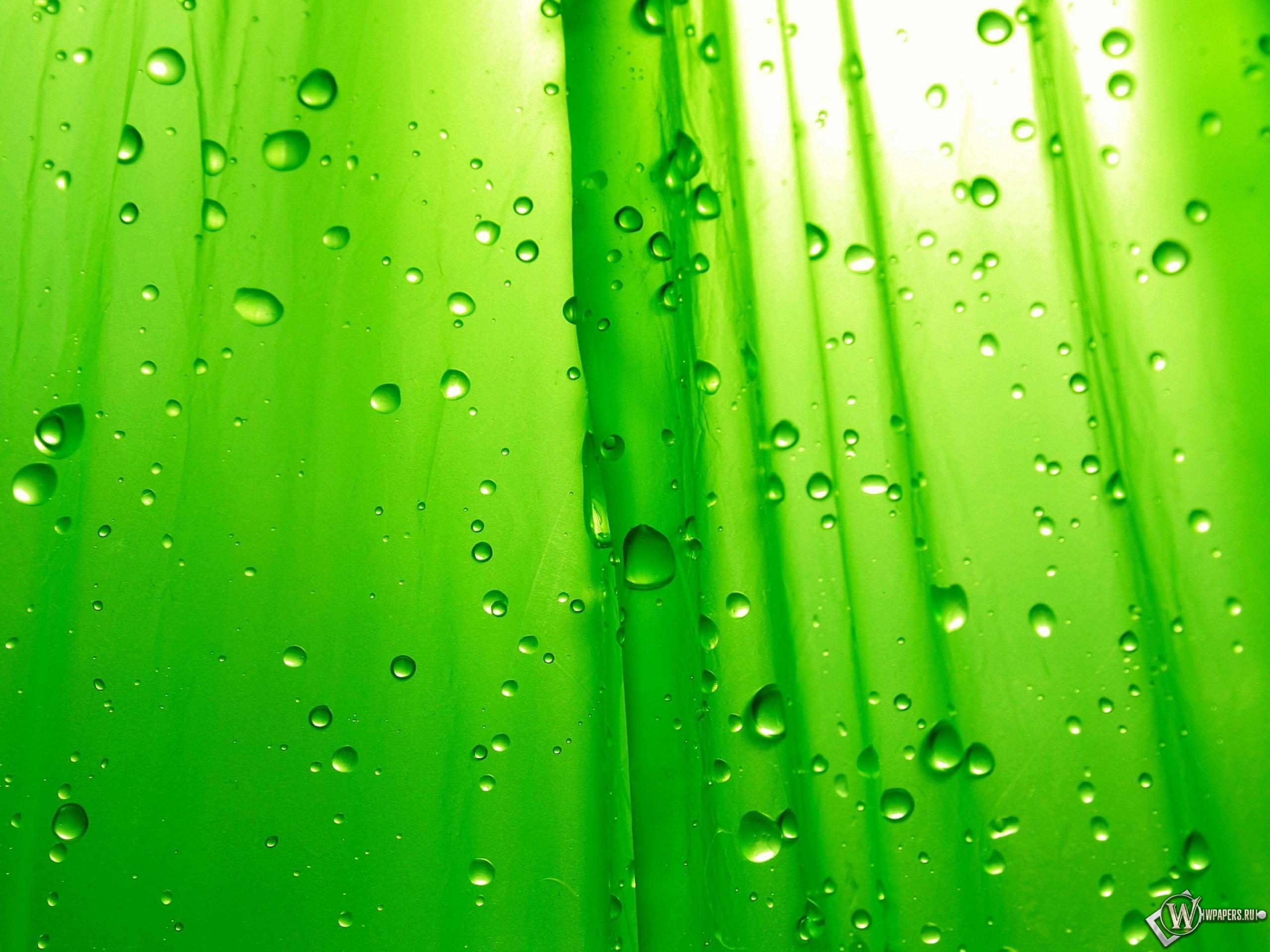 Зелёный фон 2560x1920