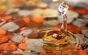Обои Капля воды: Вода, Макро, Капля, Вода