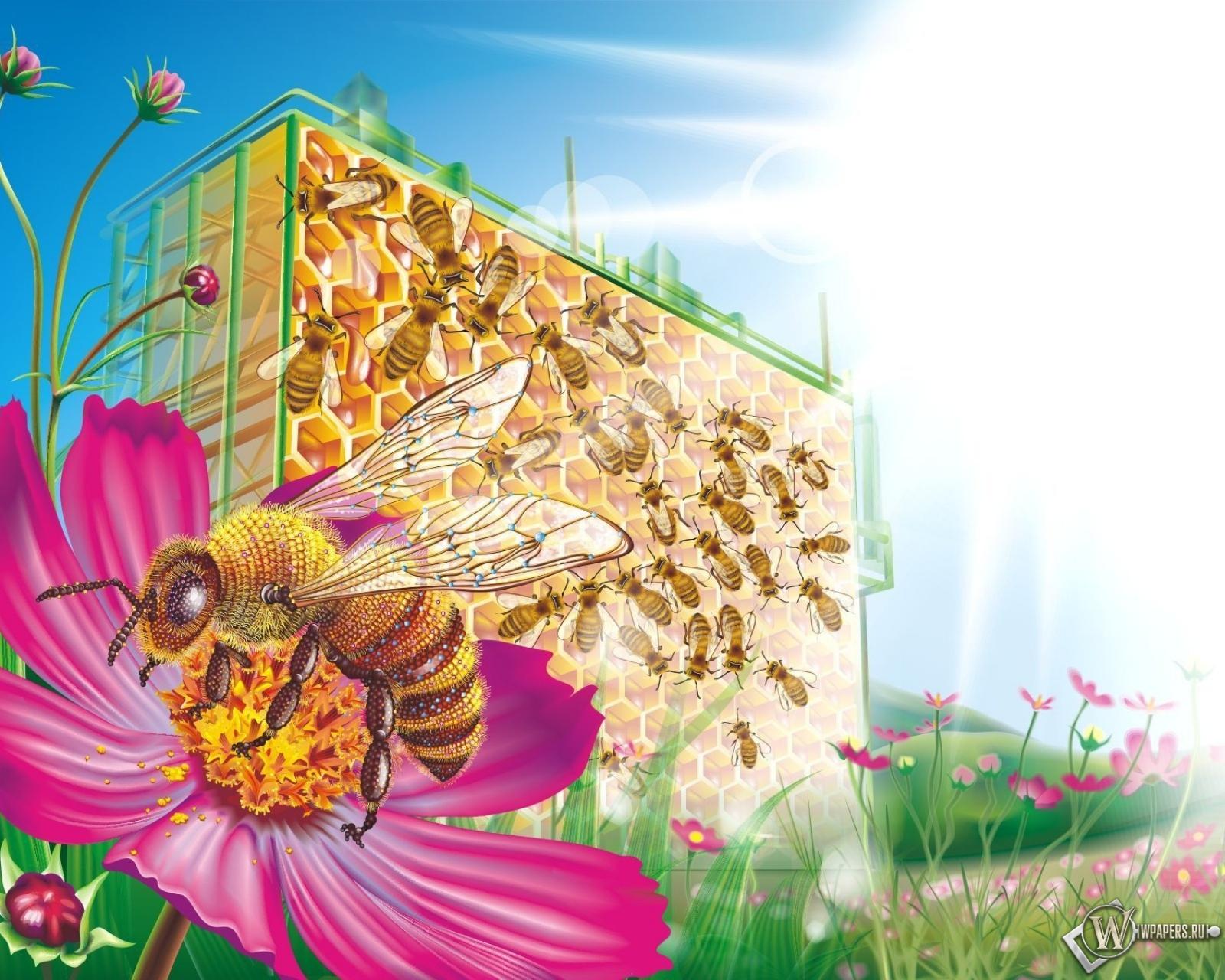 Открытки с днем рождения для пчеловодов, днем рождения