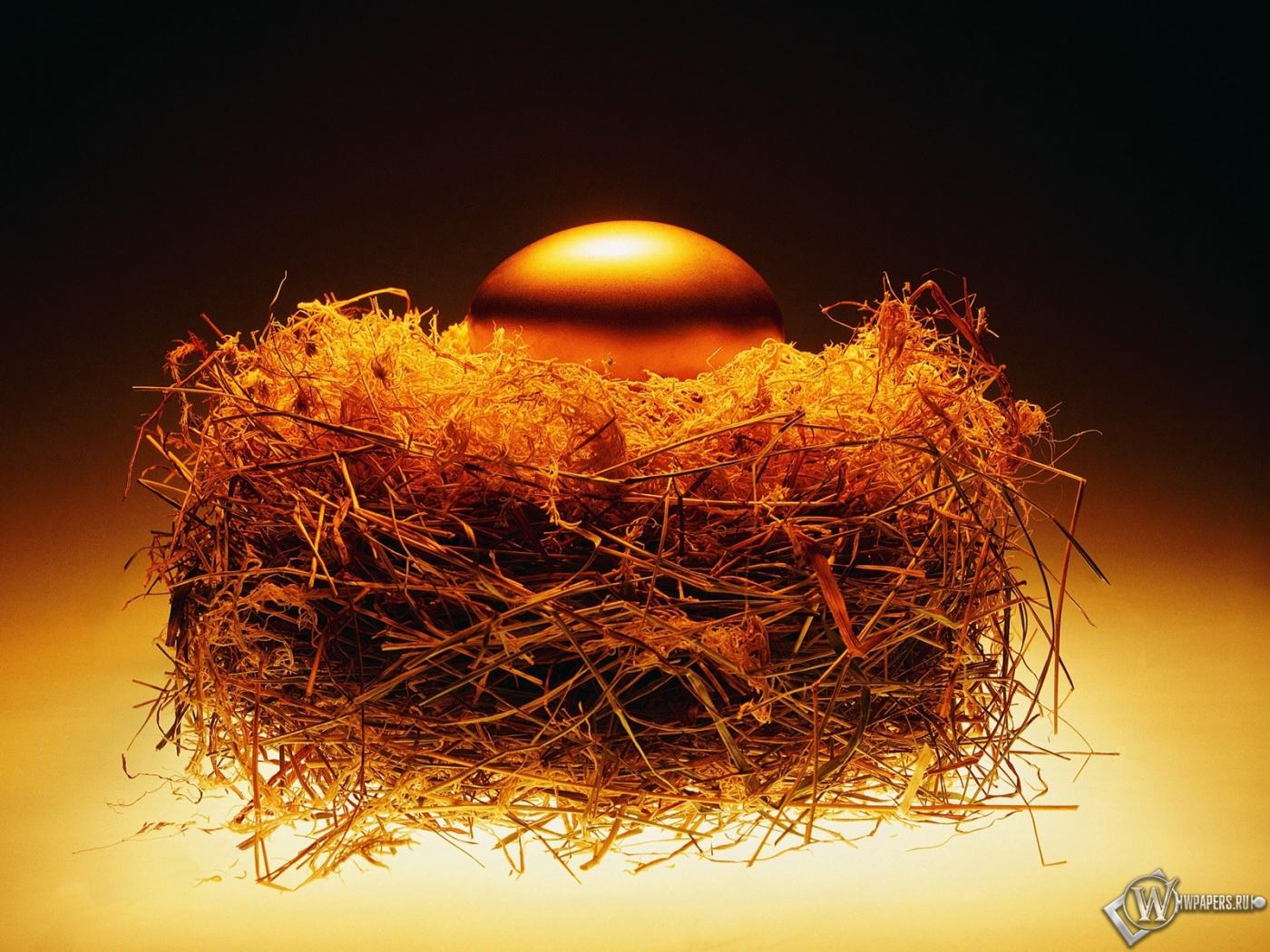 Золотое яйцо в гнезде 1400x1050