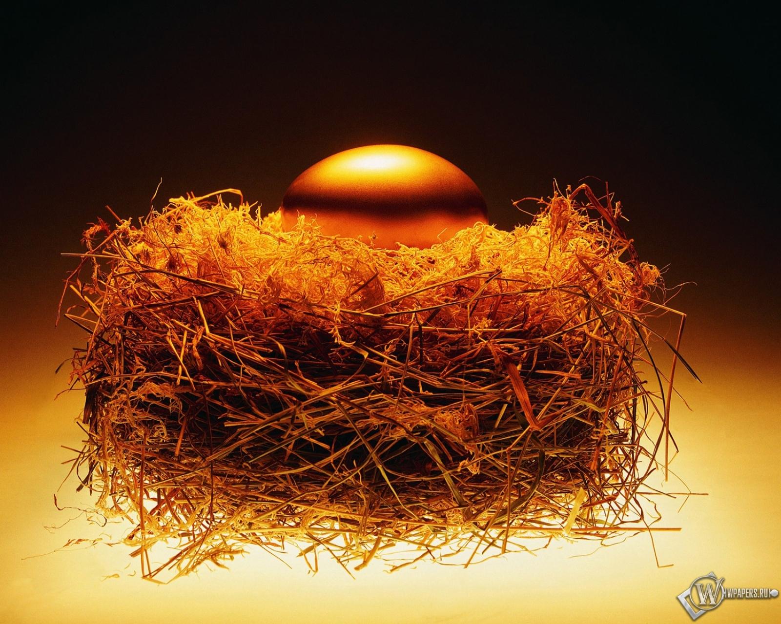 Золотое яйцо в гнезде 1600x1280