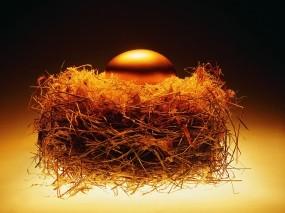 Обои Золотое яйцо в гнезде: Золото, Гнездо, Яйцо, Деньги