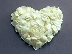 Обои Сердце из белых роз: Сердце, Лепестки роз, Белые розы, Настроения