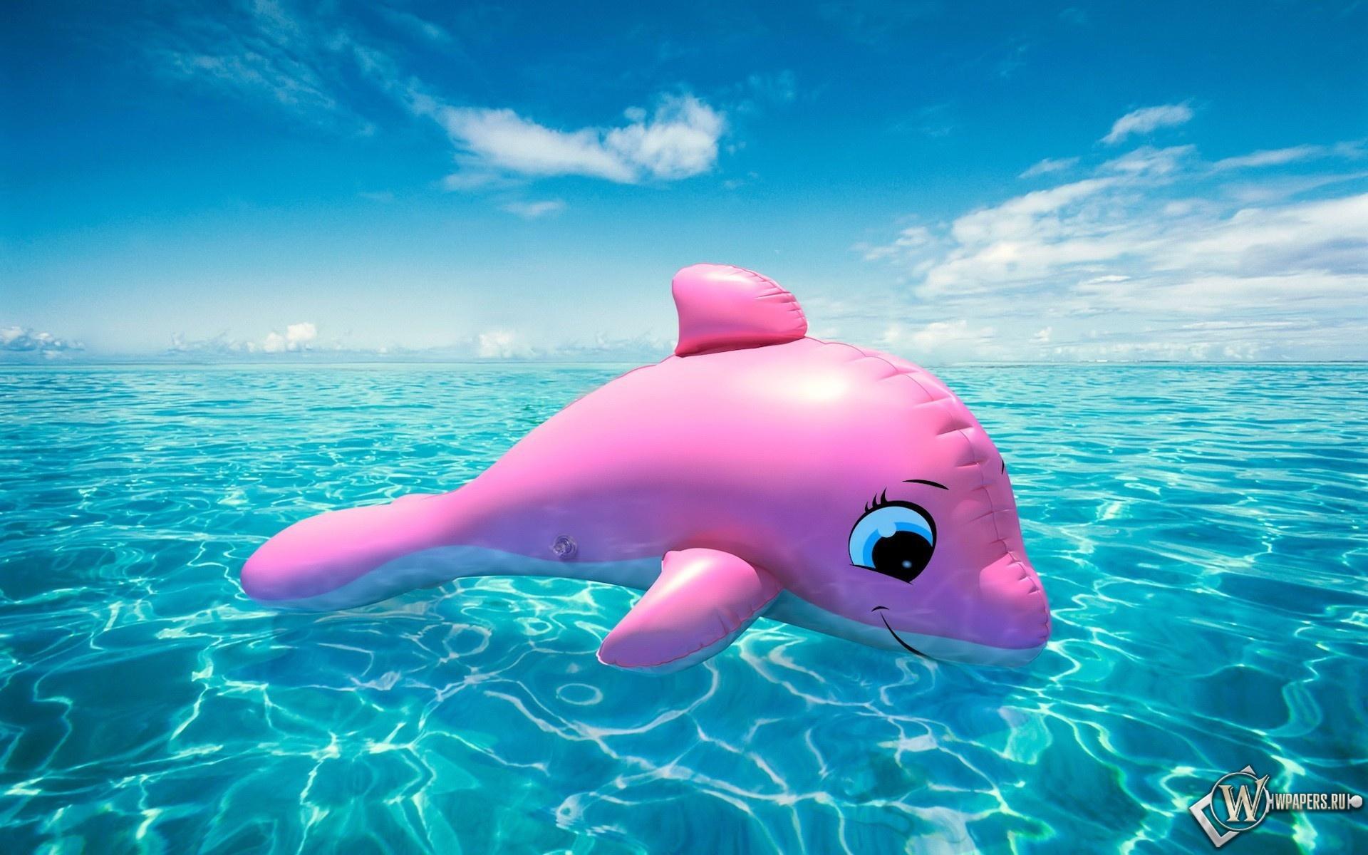 Надувной дельфин 1920x1200
