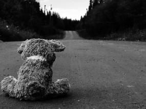 Обои Грустно без тебя: Дорога, Асфальт, Медведь, Настроения