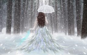Обои Девушка с зонтом: Зима, Снег, Лес, Девушка, Зонт, Настроения