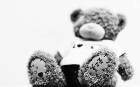 Обои Черно-белый мишка: Ч/б, Плюшевый мишка, Настроения