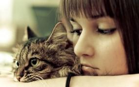 Обои Печаль: Девушка, Кошка, Печаль, Настроения