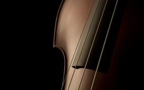 Обои Скрипка: Макро, Скрипка, Струны, Музыка