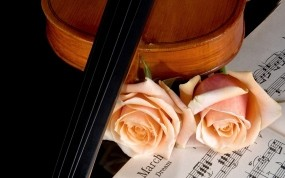 Скрипка и роза