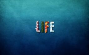 Обои Life Goes On: Музыка, Life, сингл, Музыка