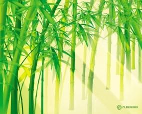 Обои Солнце сквозь бамбук: Свет, Зелень, Бамбук, Бамбук