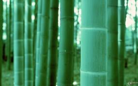 зелено-морской цвет