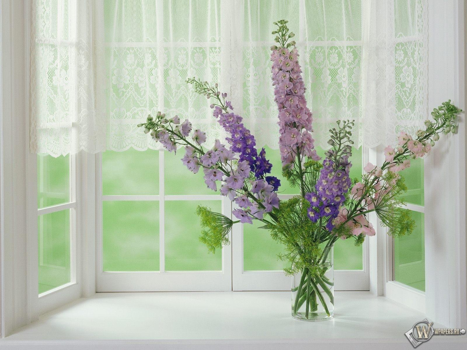 цветы на окне 1600x1200