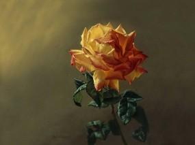 Обои Чайная роза: Зелень, Роза, Цветок, Лепестки, Листья, Живопись, Цветы