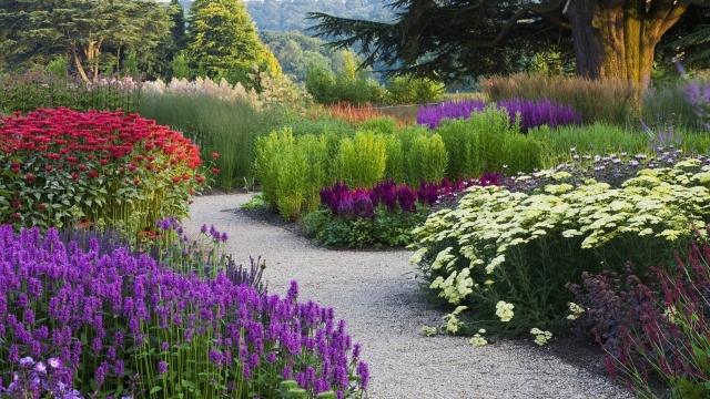 Цветочный сад