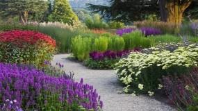 Обои Цветочный сад: Зелень, Цветы, Лето, Цветы