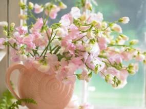 Обои Цветы на окне: Окно, Цветы, Букет, Ваза, Цветы