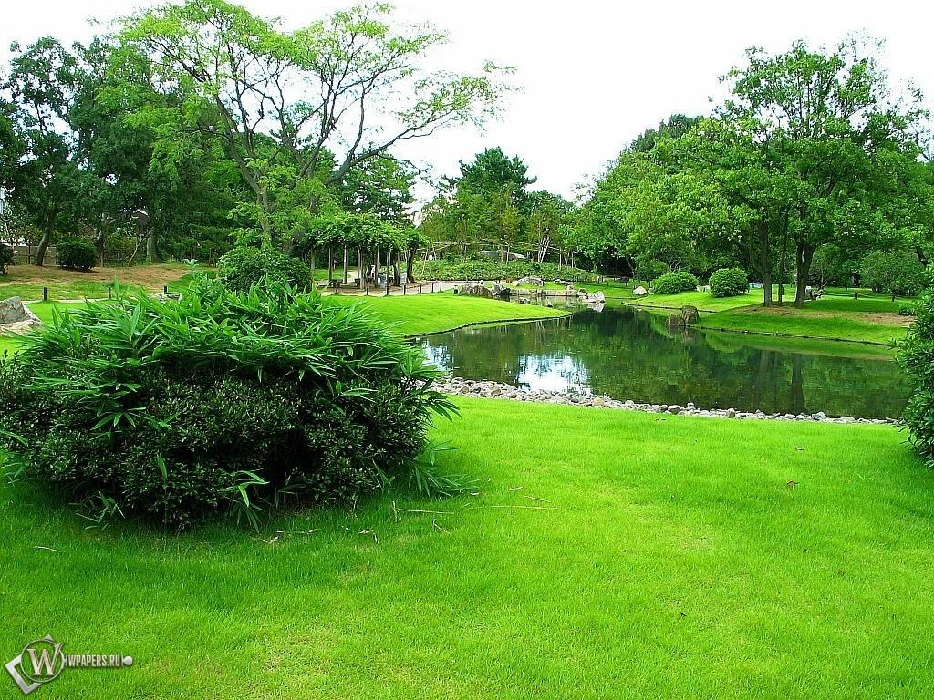 Зеленый парк 1024x768