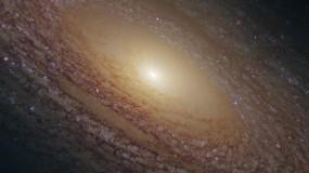 Спиральная галактика NGC 2841