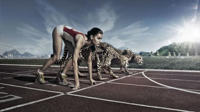 Девушка и гепарды
