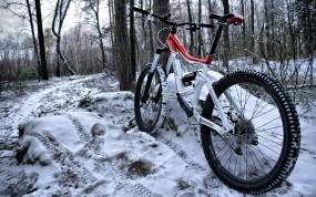 Обои Спортивный велосипед зимой: Зима, Снег, Лес, Велосипед, Спорт