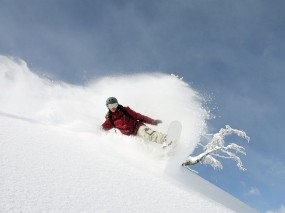 Обои Сноубординг: Зима, Горы, Снег, Дерево, Сноуборд, Спуск, Спорт