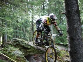 Обои Downhill: Лес, Спорт, Экстрим, Велосипед, Спорт