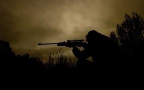 Обои Снайпер: Оружие, Снайпер, Оружие