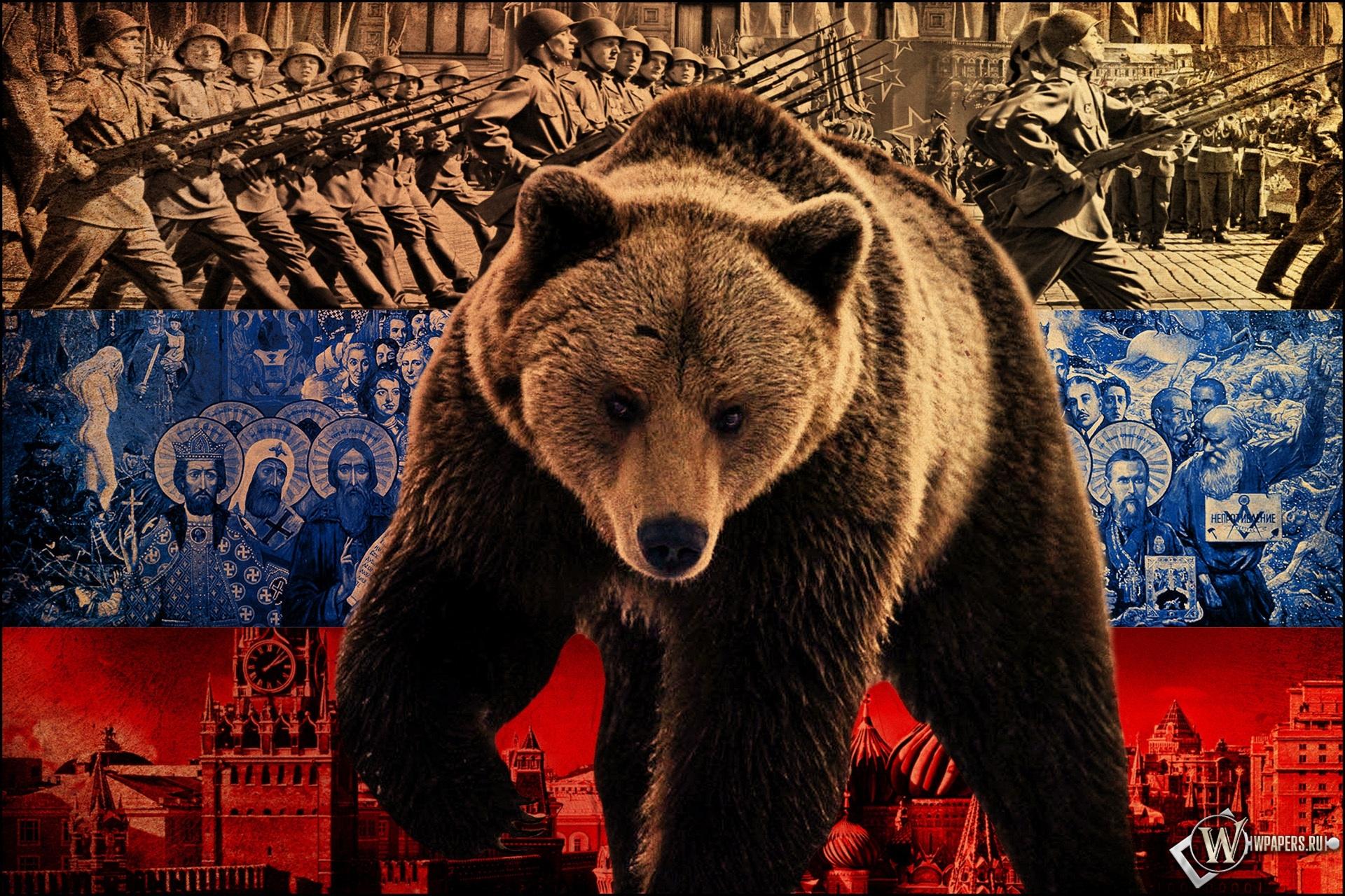 Русский медведь 1920x1280