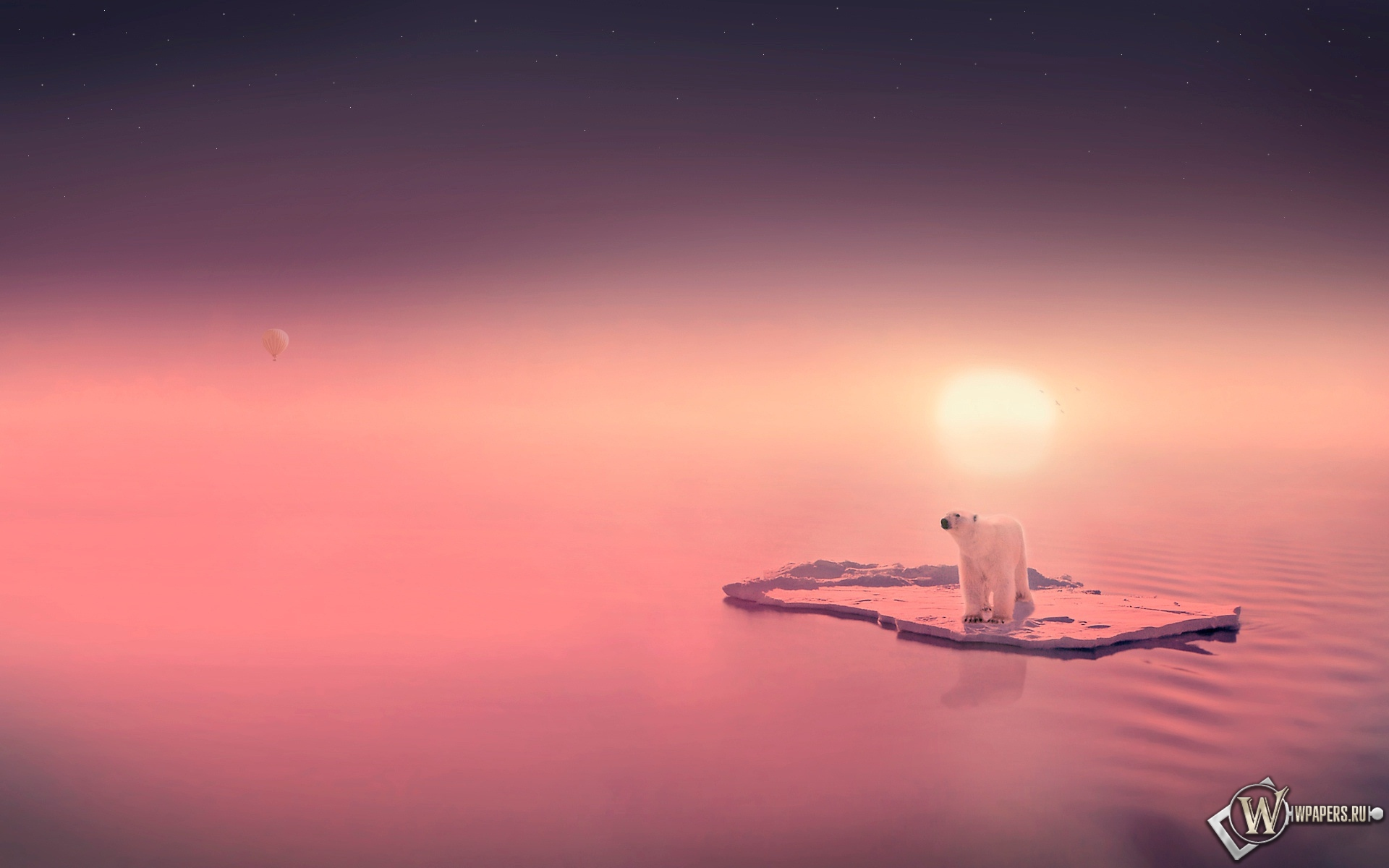 Белый медведь на льдине 1920x1200