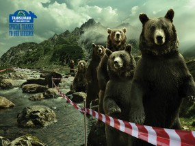 Очередь медведей